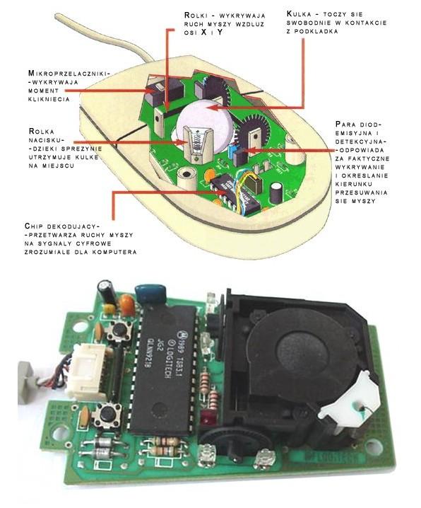 Mysz mechaniczna (kulkowa)